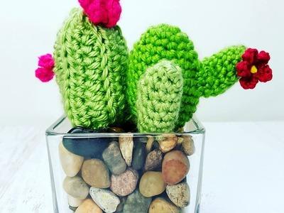 Easy to Crochet Cactus . Cacti