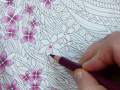 How to colour in cherry blossoms with colouring pencils ⎮ Colour pencil blending