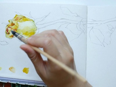 Part 2: How to draw and paint a rose