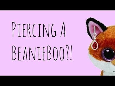 Piercing A Beanie Boo??!|| DIY Beanie Boo Stuff!