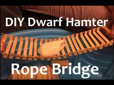 DIY Dwarf Hamster Rope Bridge