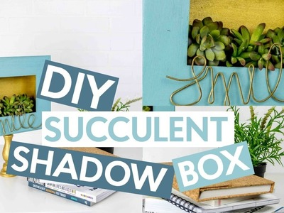 DIY Succulent Shadow Box