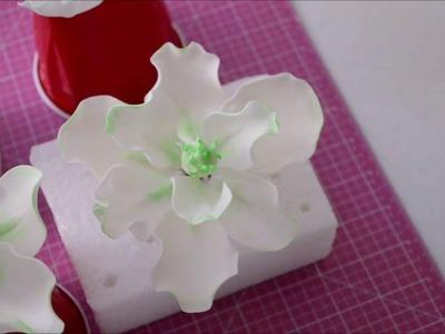 How to Make a Magnolia