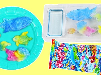 Kracie Popin Cookin DIY GUMMY Japanese Candy Whale, Turtle, Penguin, Ocean Animal Shapes!