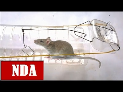 How to make mouse trap powerfull