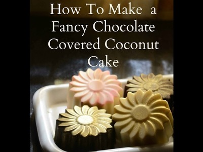 How To Make a Fancy Chocolate Covered Eggless Coconut Cake Recipe - Easy Cake Recipe