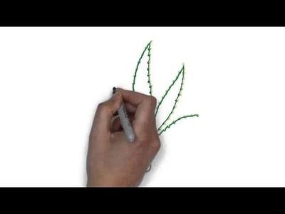 How to draw Marijuana leaf , Learn to draw Marijuana leaf