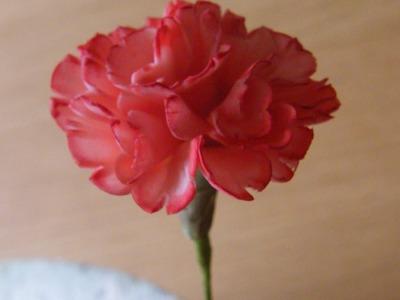 How to make a Gumpaste Flowerpaste Carnation