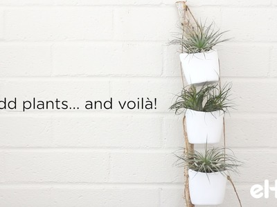 Learn to Make Hanging Plant Holders From Plastic Bottles