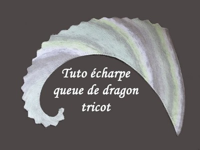 TUTO ECHARPE QUEUE DE DRAGON AU TRICOT knit scarf dragon tail