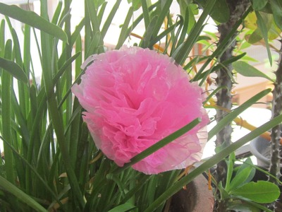 Basic plastic carry bag flower - easiest method