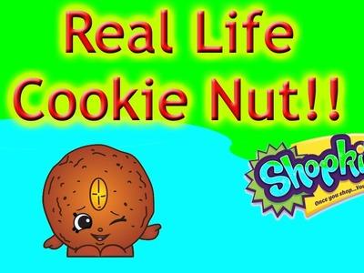Shopkin Videos DIY Cookie Nut - Shopkins DIY Season 4,cookie swirl c inspired,shopkins diy