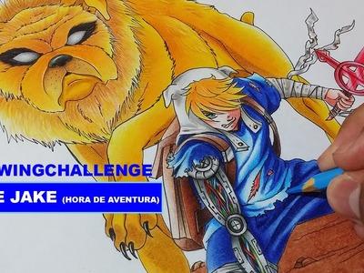 Drawing Challenge - Finn e Jake (Hora de Aventura. Adventure Time)