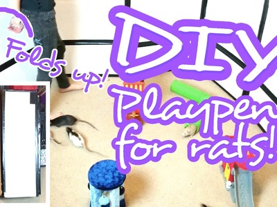 Easy DIY Foldable Playpen for Rats