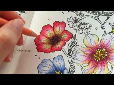 Spring Flower 4.5 : Daydreams Coloring Book | Coloring With Colored Pencils