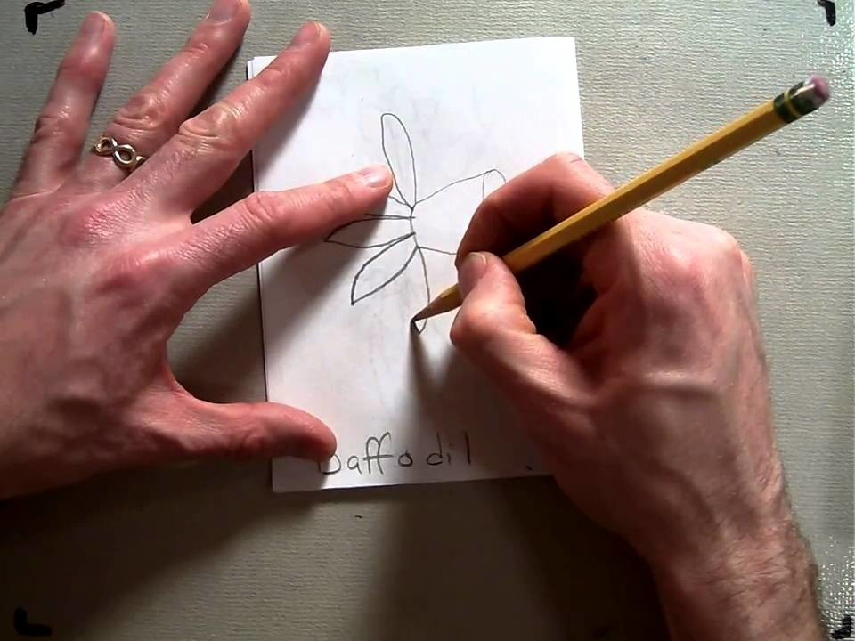 How to draw a Daffodil (Part6.9).MOV