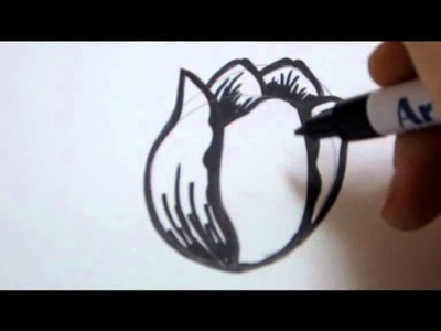 How To Draw A Flower -  Tulip Flower