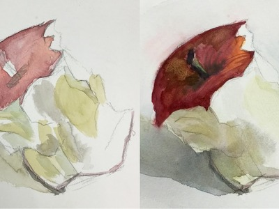 How to Refine and Finish a Watercolor Painting of an Eaten Apple