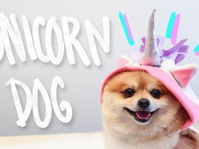DIY Unicorn Dog Clothes - Hello Dudettes