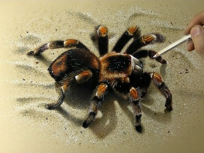 Drawing 3D Spider - How to draw 3D Art