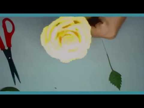 How to make easy tissue paper flowers step by step