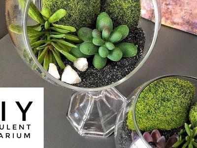 DIY   Succulent Globe Terrarium   Easy  & Inexpensive