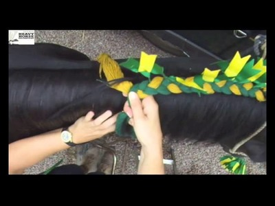 Heavy Horse Decorations braiding a Shire Horse  mane with Mandy Ward
