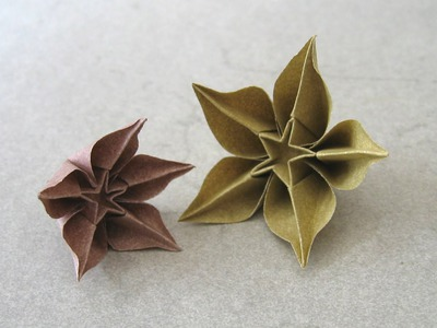 Origami Instructions: Carambola (Carmen Sprung)