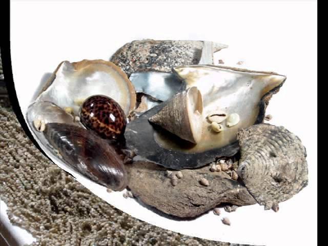 Bedido - Groothandel Philippine Beads, natuurlijke bestanddelen, Shell sieraden, hout accessoire