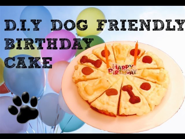 BIRTHDAY CAKE WITH CHICKEN MINCE - DIY Dog Food - a tutorial by Cooking For Dogs