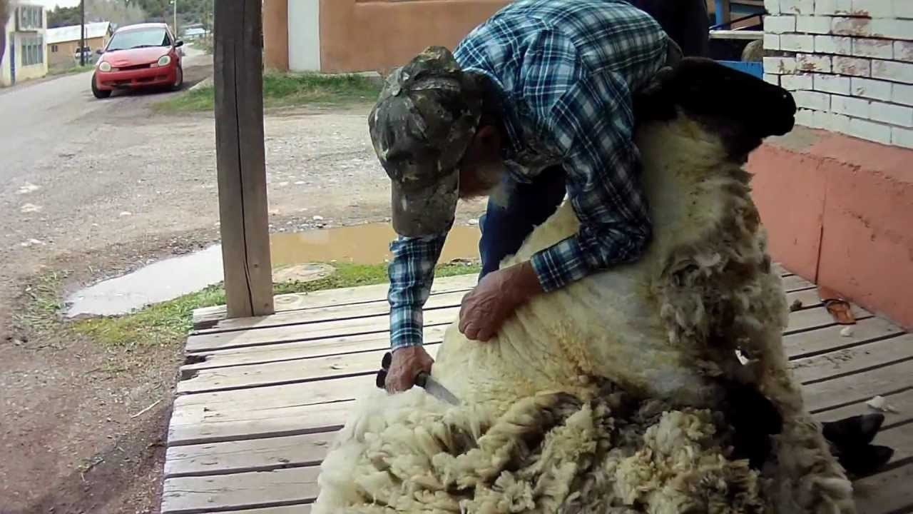 Handmade: From Sheep to Rug