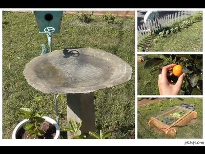 Cottage Living: DIY Bird Bath, Garden Update