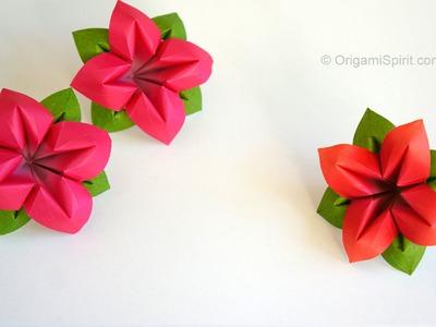 Origami Flower : : Flor de papel 4 Pétalos