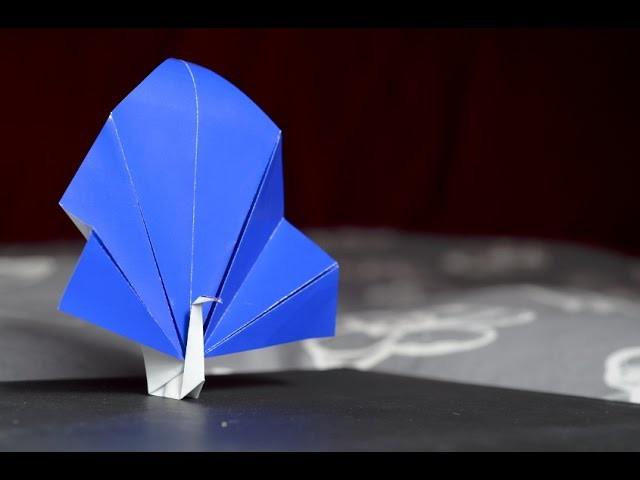 Pavone Origami