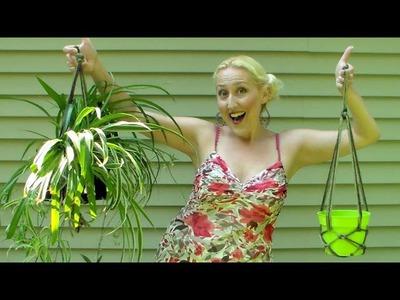 10 minute DIY rope plant hangers