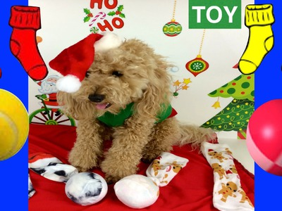 CHRISTMAS DOG SOCK TOY - XMAS FESTIVE BALL SOCK - DIY Dog Craft by Cooking For Dogs