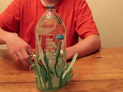 Let's Make a Cartesian Aquarium (Cartesian Diver) - Craft & Project