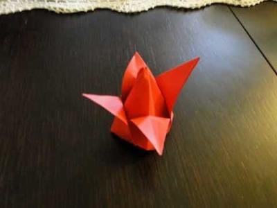 Origami Tulipan (origami Tulip)
