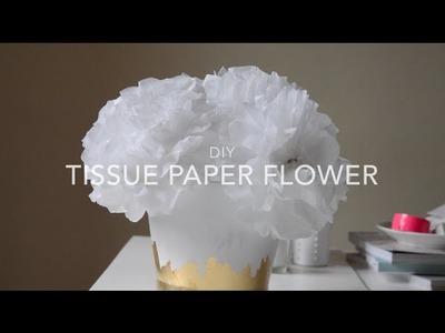 DIY Tissue Paper Flowers | Valentine's Day Decoration