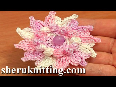 How to Crochet Flowers Free Patterns Tutorial 73 Crochet 12-Petal Flower