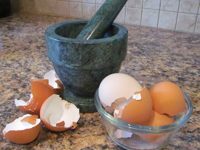 How to make Calcium Supplement from Eggshells