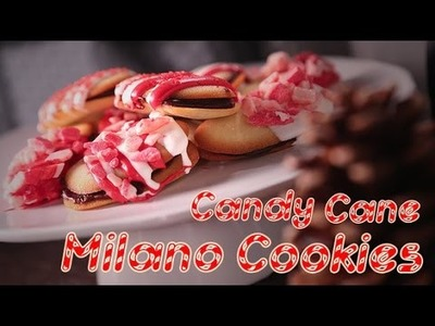 How to Make Candy Cane Milano Cookies For Santa!