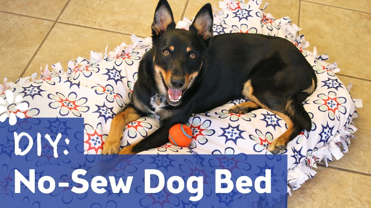 DIY No-Sew Dog Bed