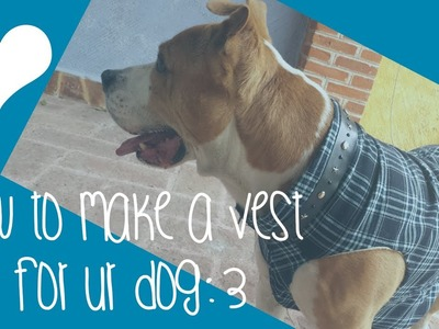 ♥How to make a sweater.  vest for ur dog♥