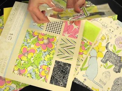 Anna Griffin - Fifi & Fido Scrapbook Collection