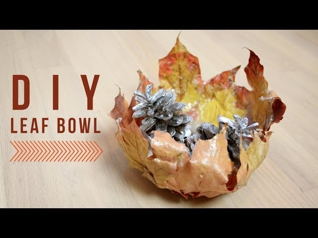 DIY Room Decor : Leaf Bowl