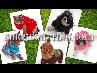 Pet Clothing  Collection