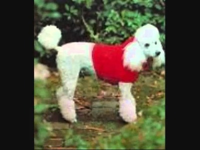 Retro Knitting Site Dog Coat Patterns