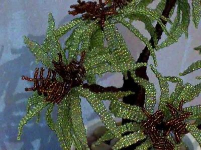 Tree beads HD 6800 green beads and 1325 brown beads