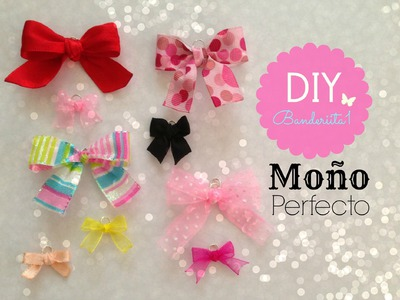 Moño Perfecto Tutorial DIY